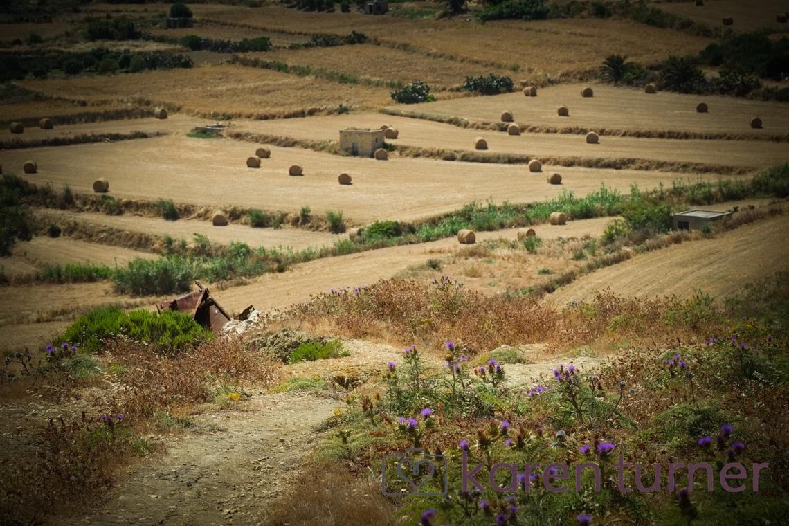 malta and gozo 2015-176
