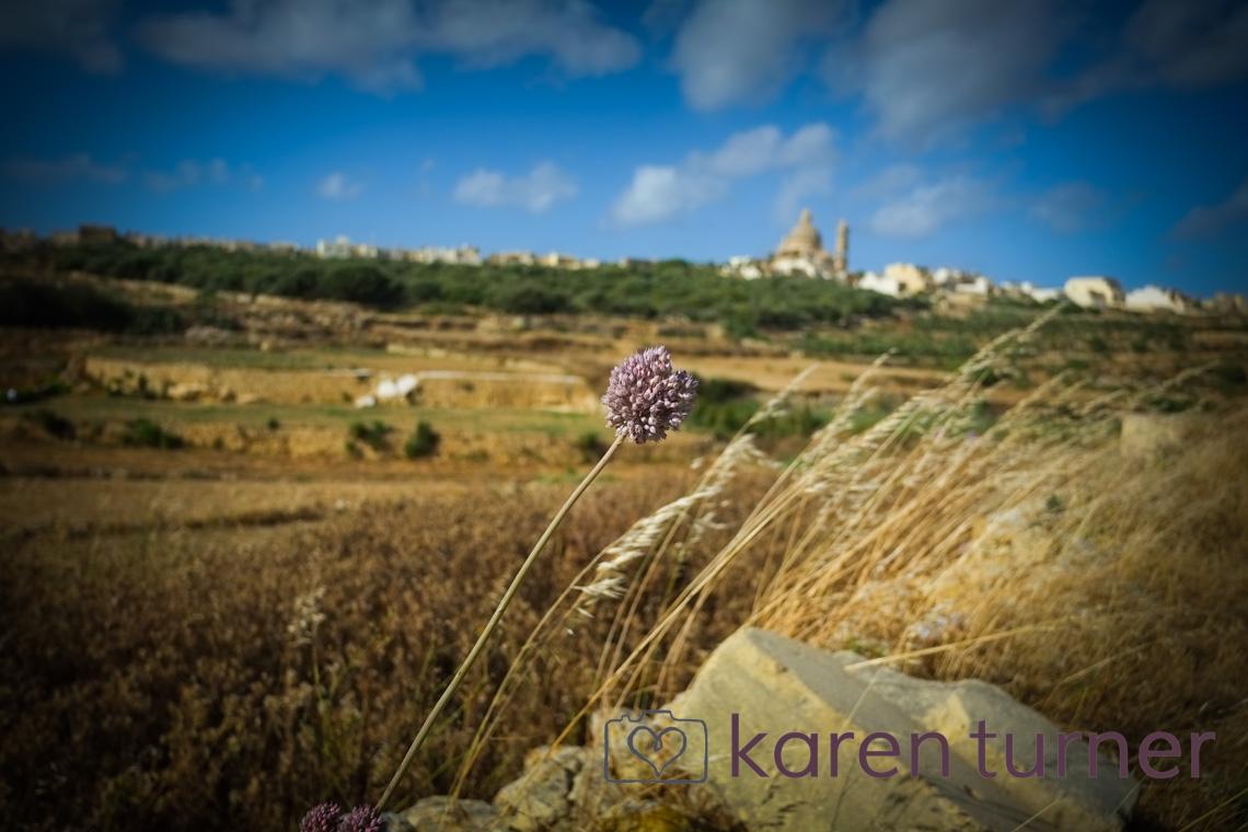 malta and gozo 2015-242