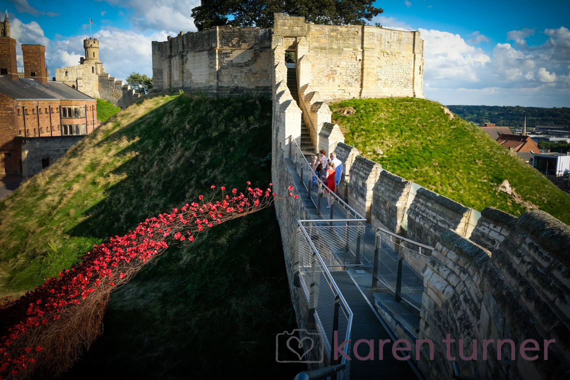 lincoln-poppies-2016-30